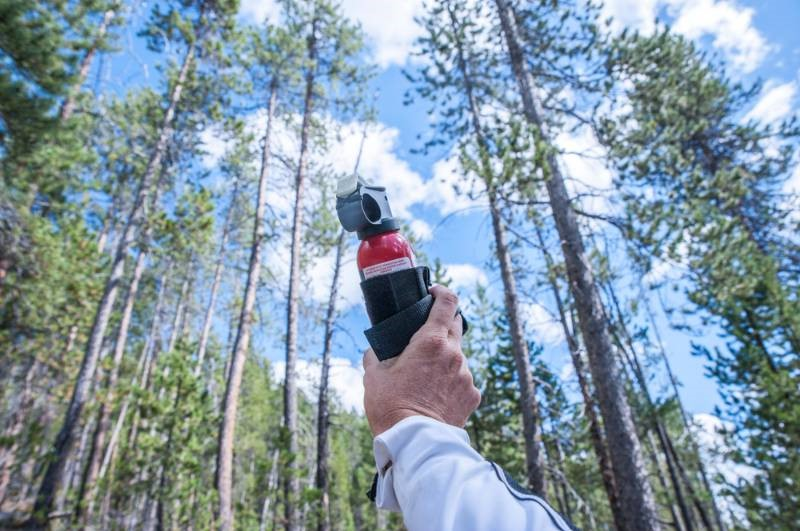 holding-can-bear-spray-on-top | camping tricks